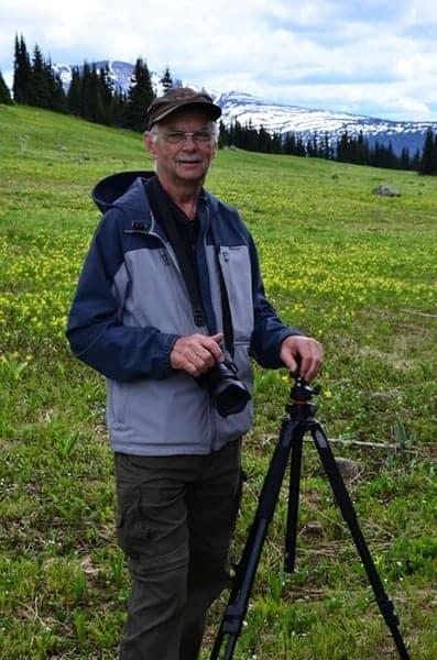 Vollrath Paula_In the Alpine Meadow