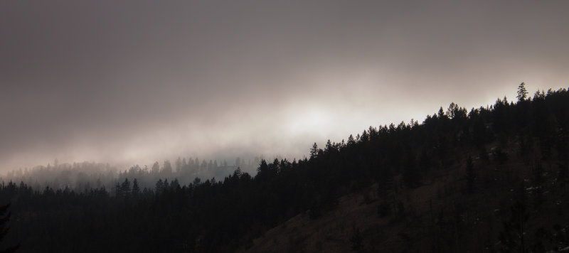 Valerie-Rampone-Morning-Mist-above-forest