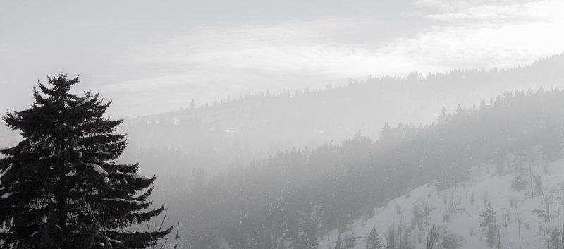 Valerie-Rampone-Winter-Mist