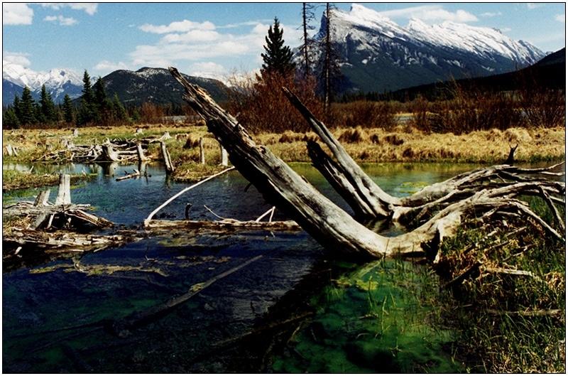 Christine-Overland-Vermilion-Lakes-Banff-AB