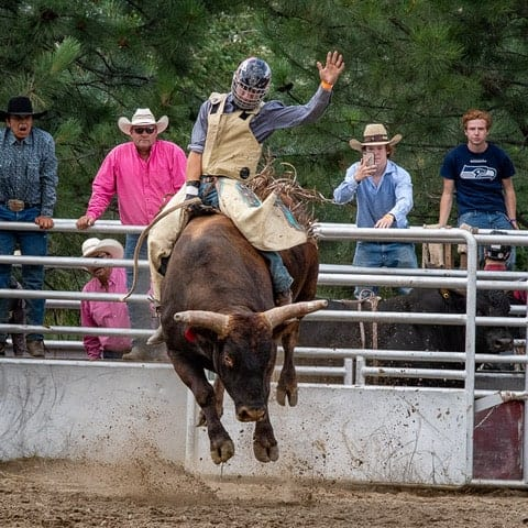Dave-Whiting-Pritchard-Rodeo2
