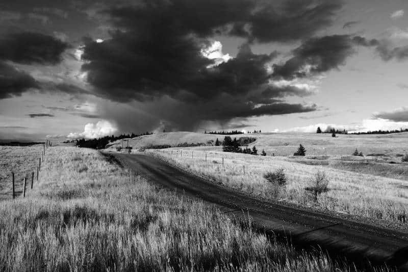 Road to Stormy Skies_Williams Linda