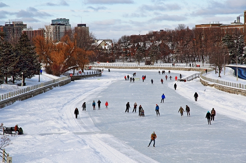 Skating The Rideau Canal_LindaWilliams