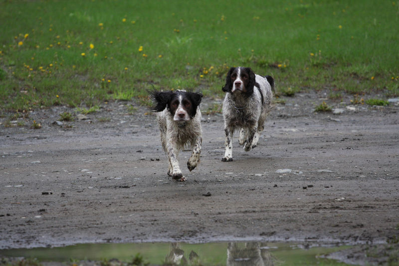 Bryan-Hunt-6-Both-Running-Wet-Togeather
