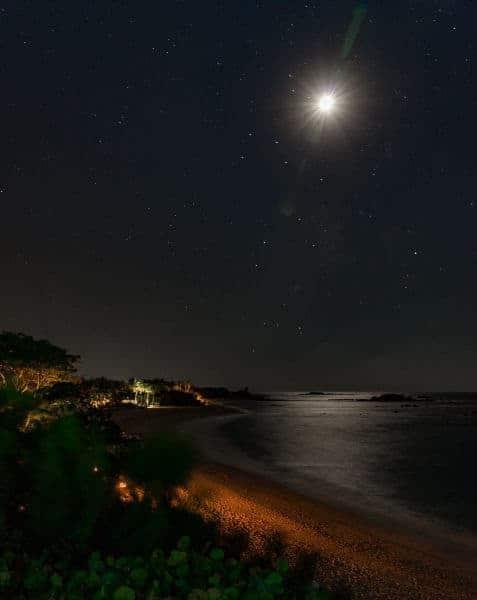 Don Garrish - 4 Tropical Night