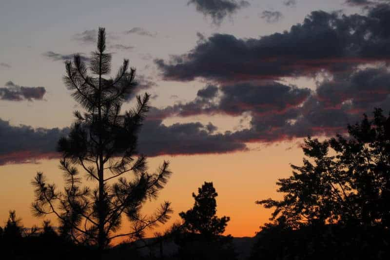 Sigi White - Storm Clouds