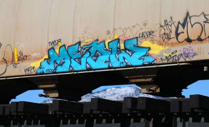 Isobel-Lamarche-4-Train-Graffiti