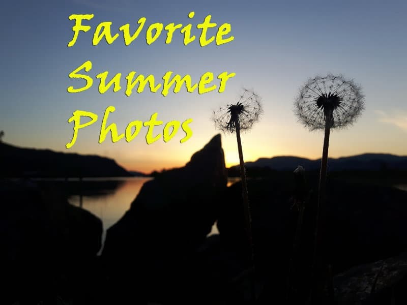 A-Favorite-Summer-Photos