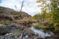 1_Dave-Whiting-Beaver-Pond