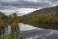 Dave-Whiting-Beaver-Pond