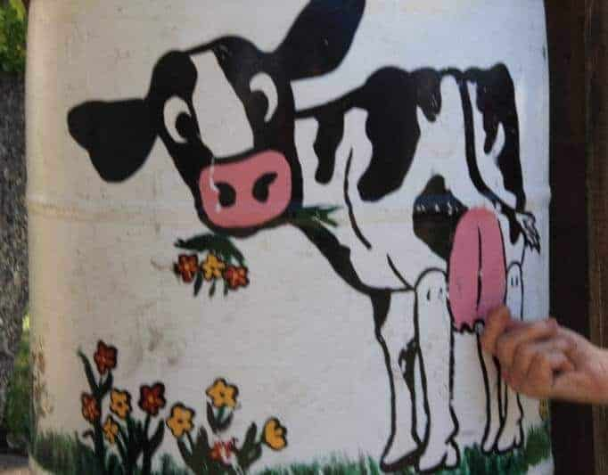 Overland_Christine_Not Just An Udder Cow (6)