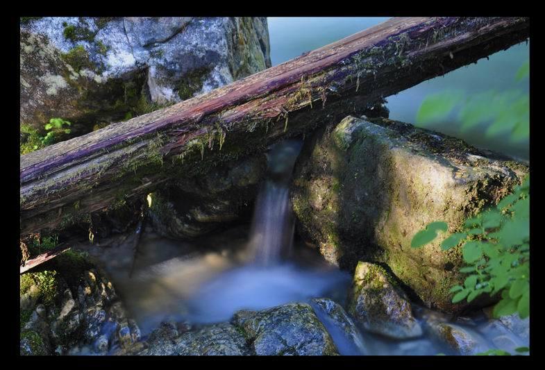 SOLOWAY GREG-MINATURE FALL'S